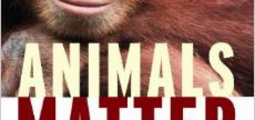Animals Matter Book