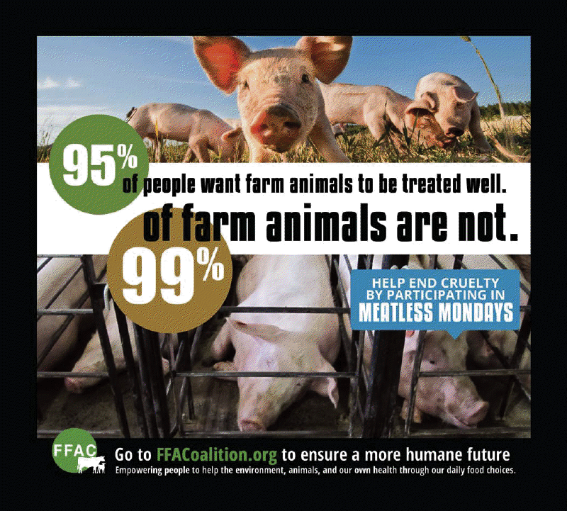 Help End Farm Animal Cruelty By Going Meat and Dairy-Free!