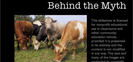 "The Myth Behind ""Happy Dairy Cows"""