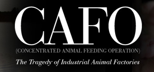 The CAFO Reader book