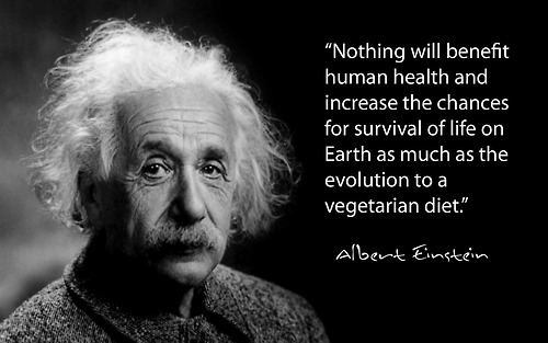 Albert Einstein on vegetarian diet