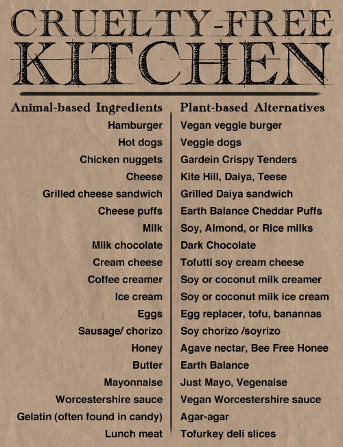 Cruelty Free Kitchen