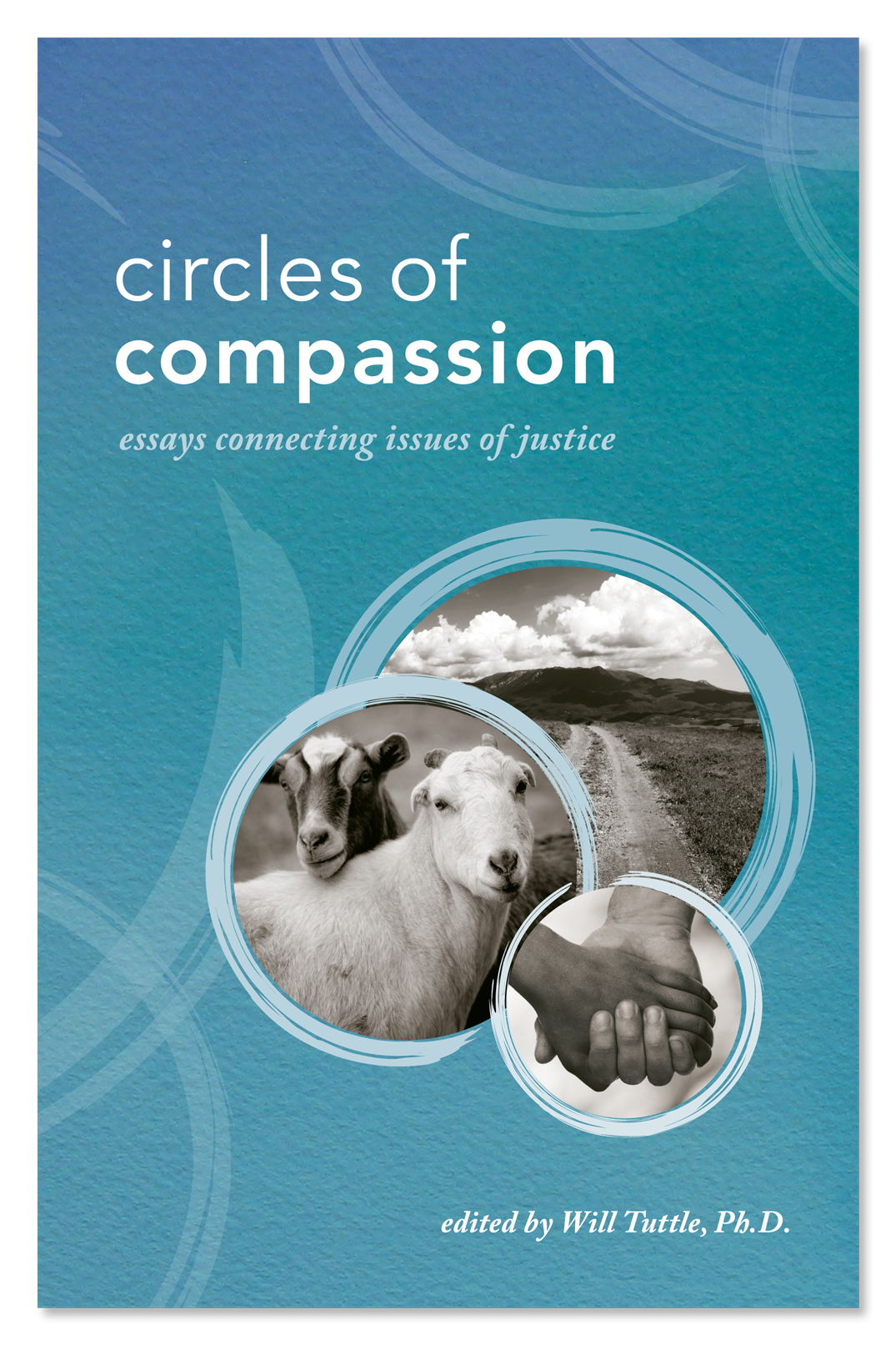 on compassion essay reviews
