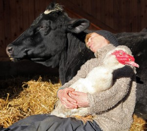 Former Dairy Farmers Turned Animal Sanctuary Owners and Vegans