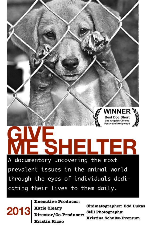 Documentary Film Give Me Shelter