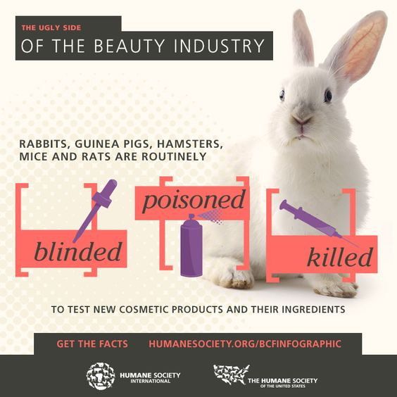 Yet in spite of the fact that species differences between human and nonhuman animals have led to flawed science and incorrect conclusions, the practice of animal experimentation continues. An estimated 25 million or more animals, including rats, mice, and birds, are used yearly in the U.S. in all areas of research, testing, and education.