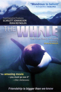 The Whale, The True Story of Luna