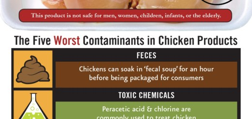 The Five Contaminants of Eating Chicken