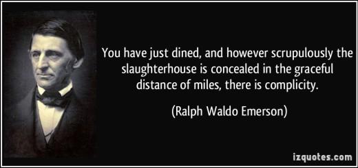 Albert Einstein Said Man Was Not Born To Be A Carnivore Humane